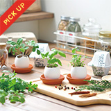 eggling eco friendly ミント [EG48-01]
