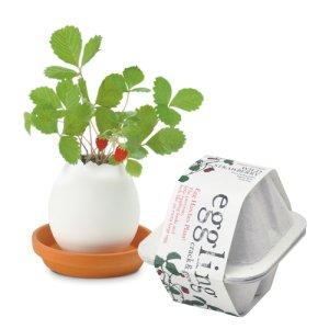 画像1: eggling eco friendly ワイルドストロベリー