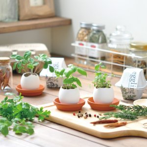 画像2: eggling eco friendly ミント