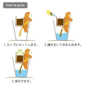 画像4: Shippon サル(バジル)