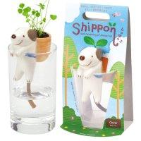 Shippon イヌ(クローバー)