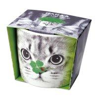 HANA ANIMALS ネコ/四つ葉のクローバー