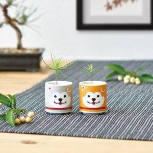 画像3: お芽でたおちょこ ハチ(茶/赤松)