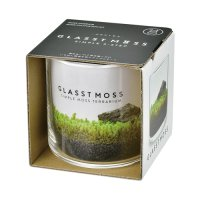 GLASSTMOSS(L)
