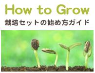 How to Grow 栽培セットの始め方ガイド